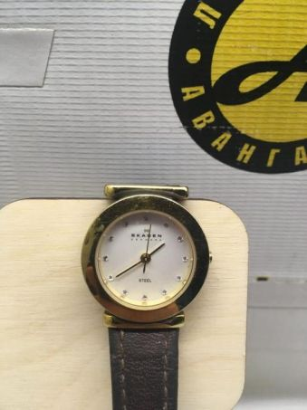 Наручные часы SKAGEN 107SGLD